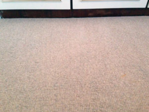 after carpet stain removal service