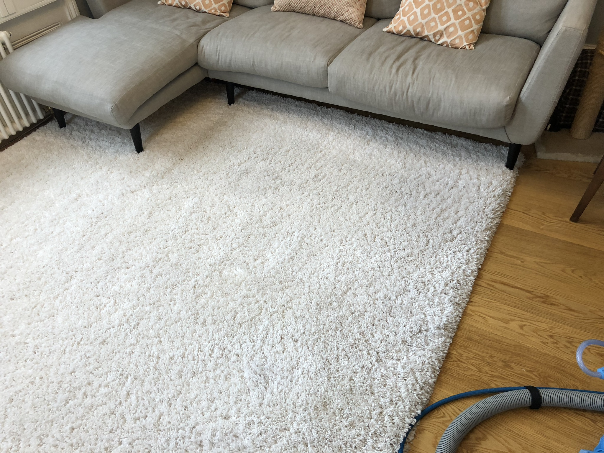 Rug Cleaning London Service Of The Highest Standards